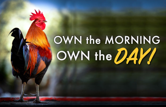own the morning own the DAY
